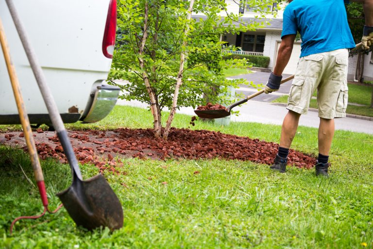 Qualities to look for when hiring a landscaping company